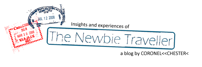 The Newbie Traveller